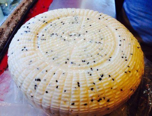 çörek otlu peyniri